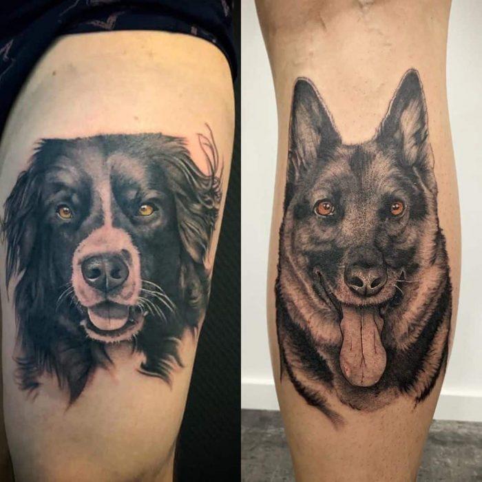 Border collie en herder honden tattoo