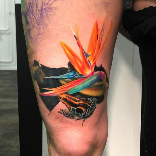Begin kleurstuk tattoo kikker