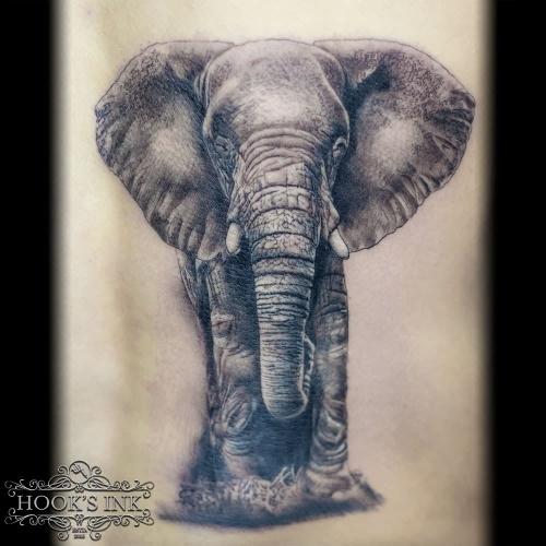 Realistische olifant onderrug