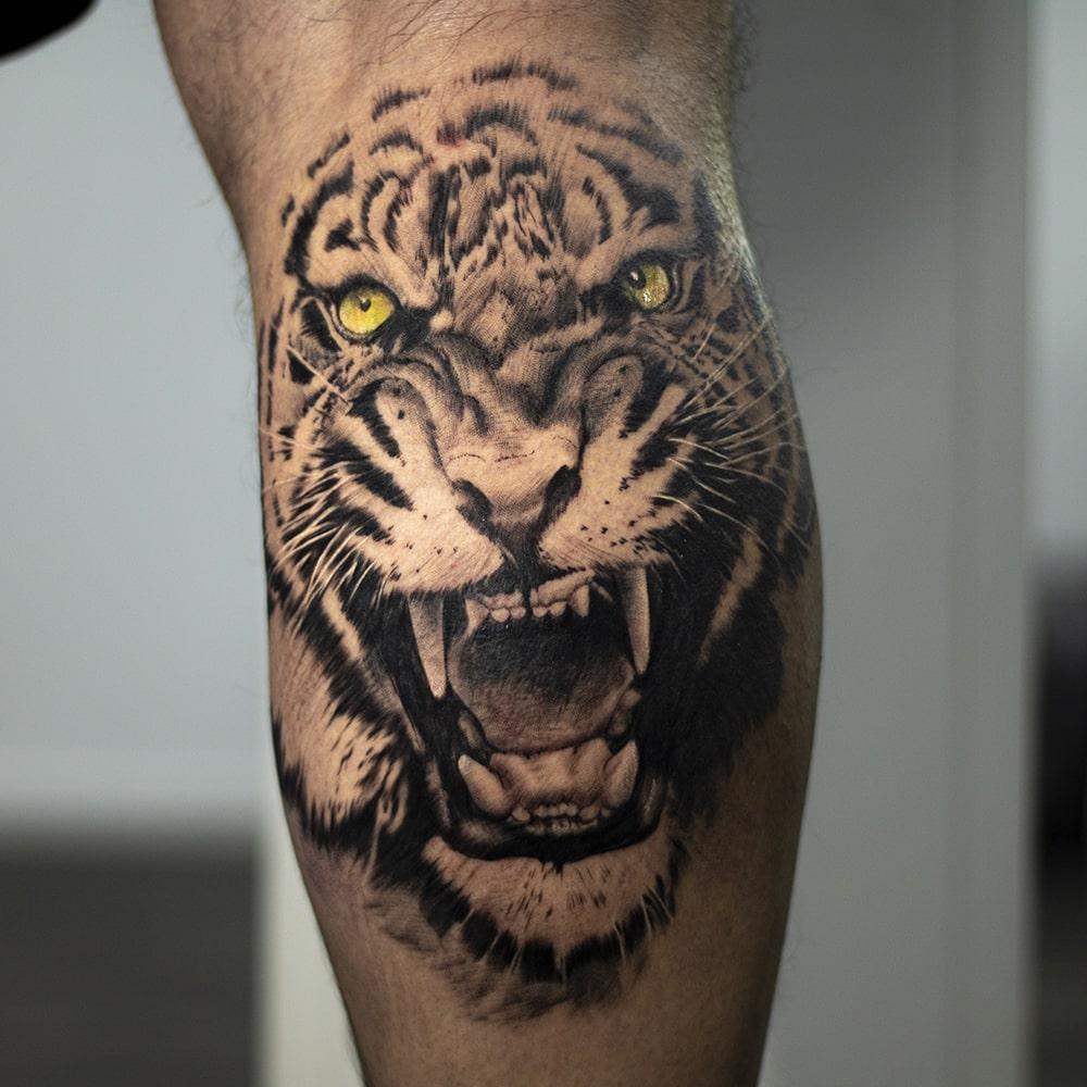 Realistische tijger op kuit tattoo met kleurogen