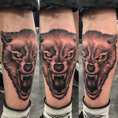 Wolf kuit