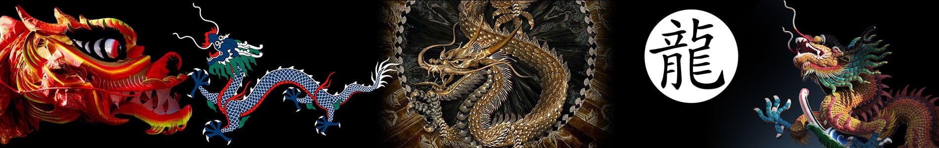 Oosterse draken tattoo banner